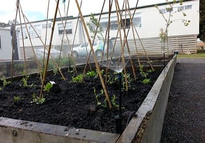 diy irrigation - Residential