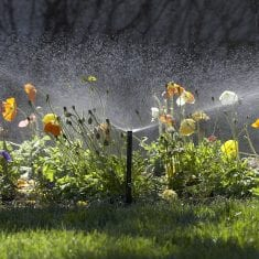 beautiful garden irrigation NZ