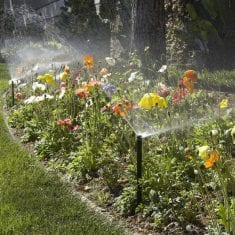 keep flowers happy irrigation Auckland