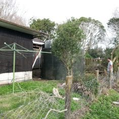 Water tank case study Auckland