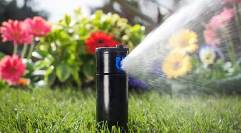 Irrigation Repairs & Maintenance