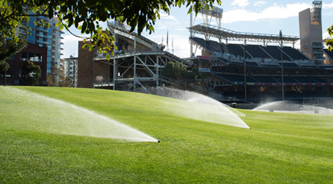 Irrigation Design & Installation